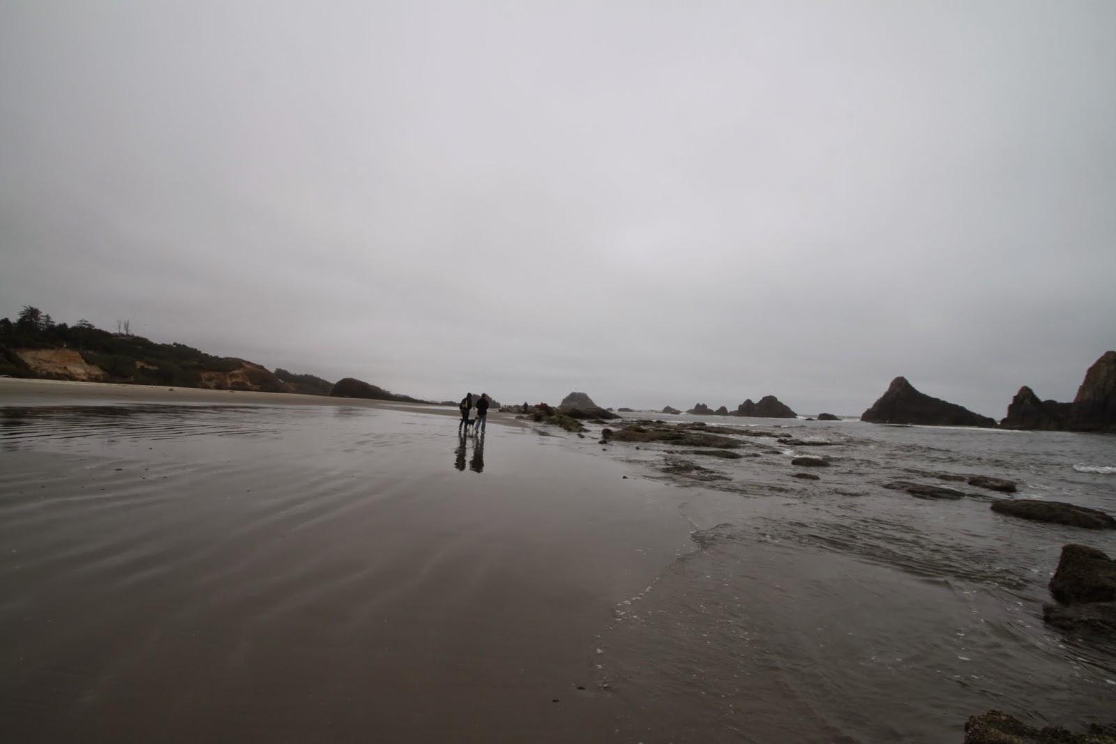 beach at Seal Rock