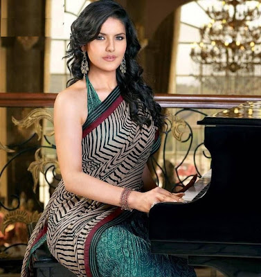 zarine khan in saree cute stills
