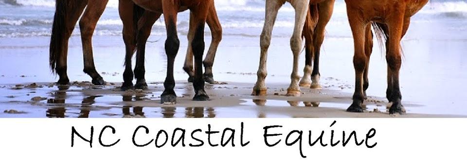 NC Coastal Equine