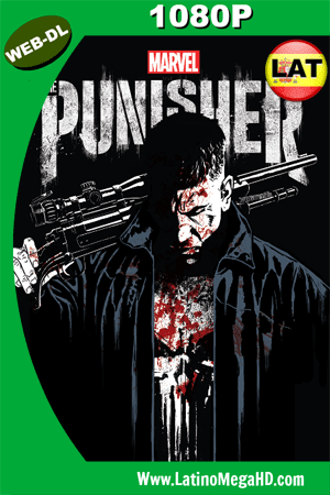 The Punisher Temporada 1 (2017) Latino HD WEB-DL 1080p ()