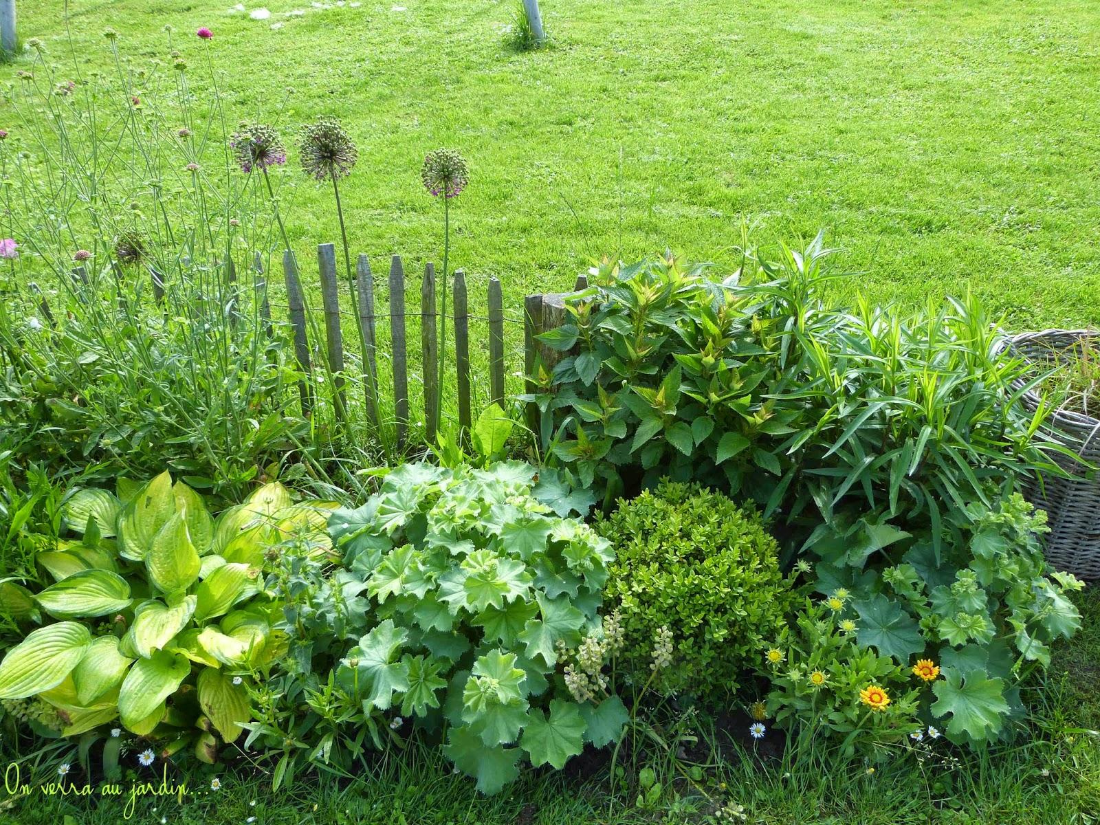 On verra au jardin mai 2014 - Graminees en pot ...