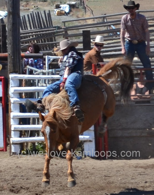 The horse is bucking hard to shake off the rider