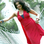 Kajal Agarwal charming Photoshoot