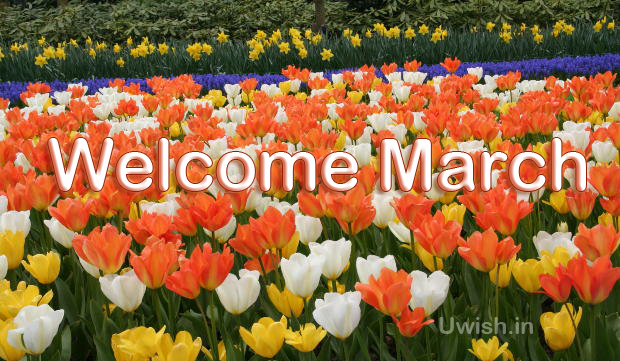 Its March. Spring season. Lets welcome march.