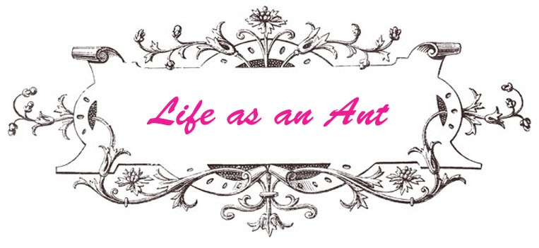 Life as Ant