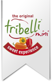 The original Tribelli mini