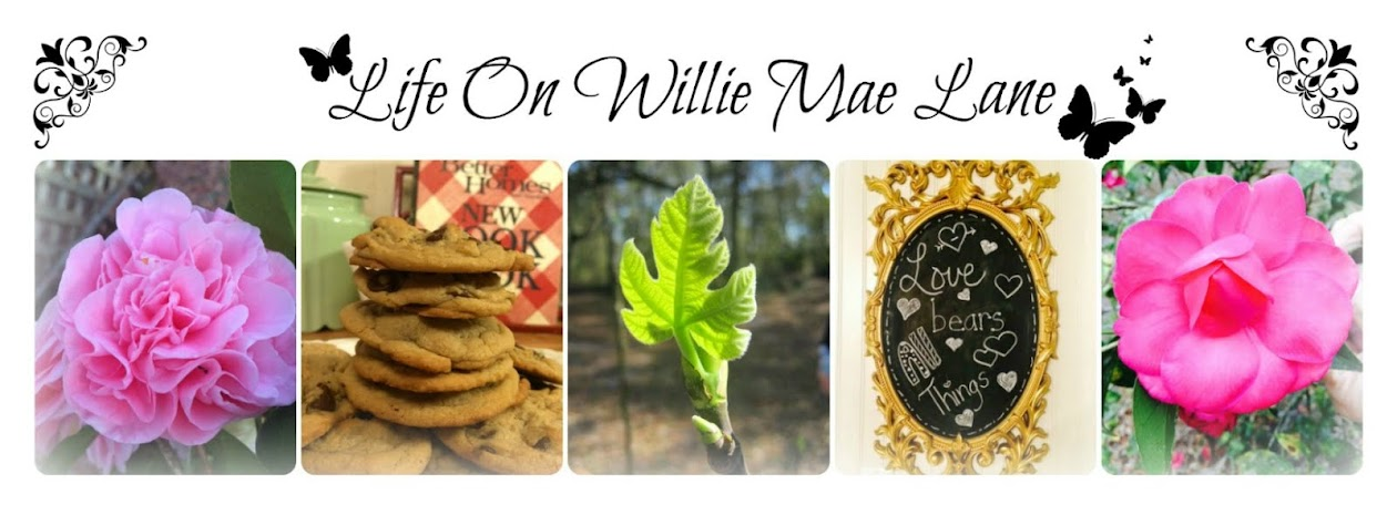 Life On Willie Mae Lane
