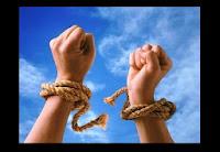 Будущие девелоперы требуют: «Свободу Полонскому!»
