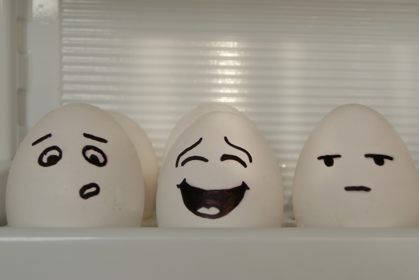 Picture Gallery: Funny Egg Faces Gallery, Eggcellent Videos Funny ...