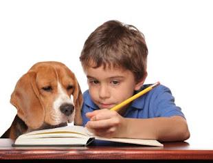 Para leer en manada