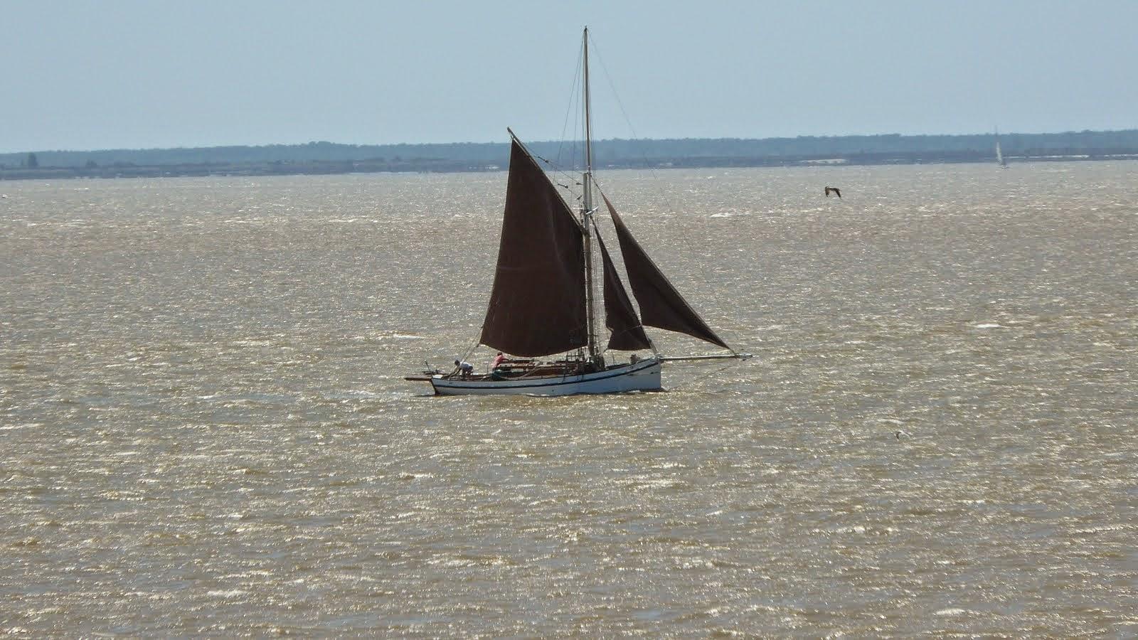 Voilier sur l'estuaire, Talmont-sur-Gironde, France