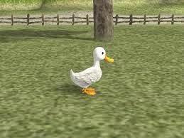 Cara Mendapatkan Bebek HM AWL