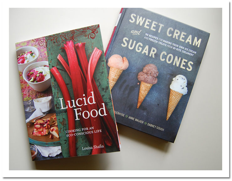 Lucid Food ~ Sweet Cream and Sugar Cones