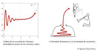 Fibonacci-Kundalini-serpiente