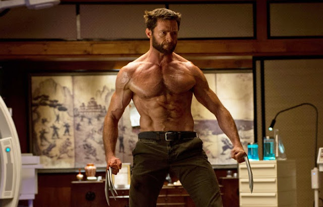 The Wolverine | Film Review | Movie Review | SHELF HEROES