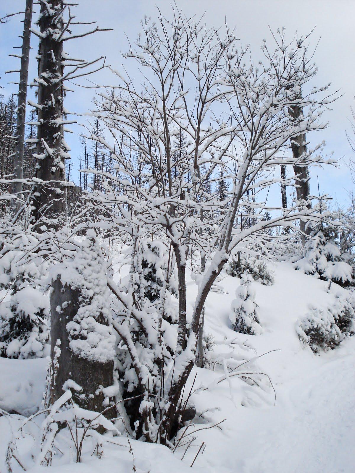 Tatrzańska Zima - Dzień IV - Przełęcz Zawrat lifestyle góry
