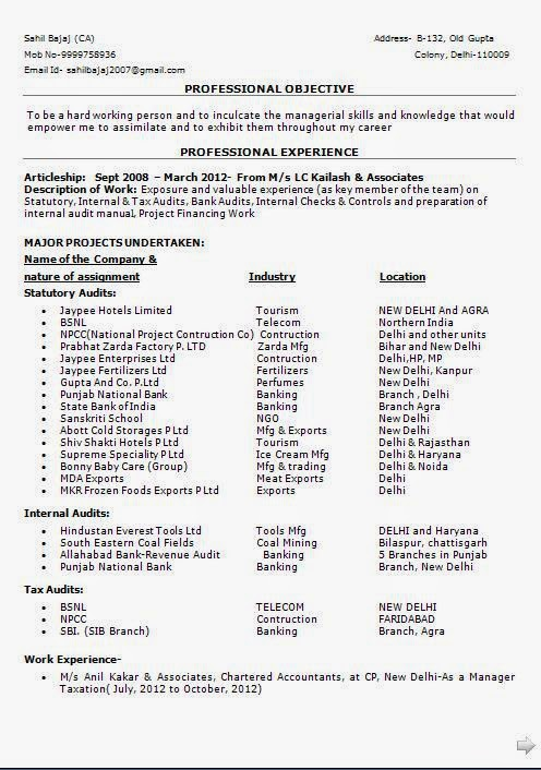 statutory auditor resume