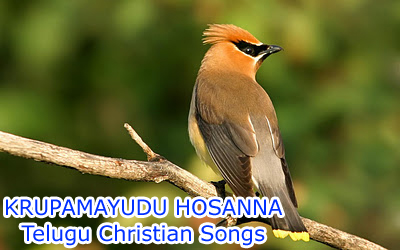 Hosanna songs free download list of bro yesanna songs all ...