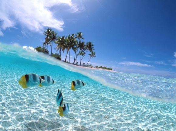 Refreshing Blog Wisata Bahari