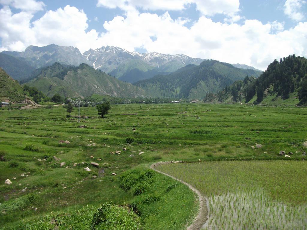 Cool Nature Pictures Leepa Valley Azad Kashmir Pakistan Images