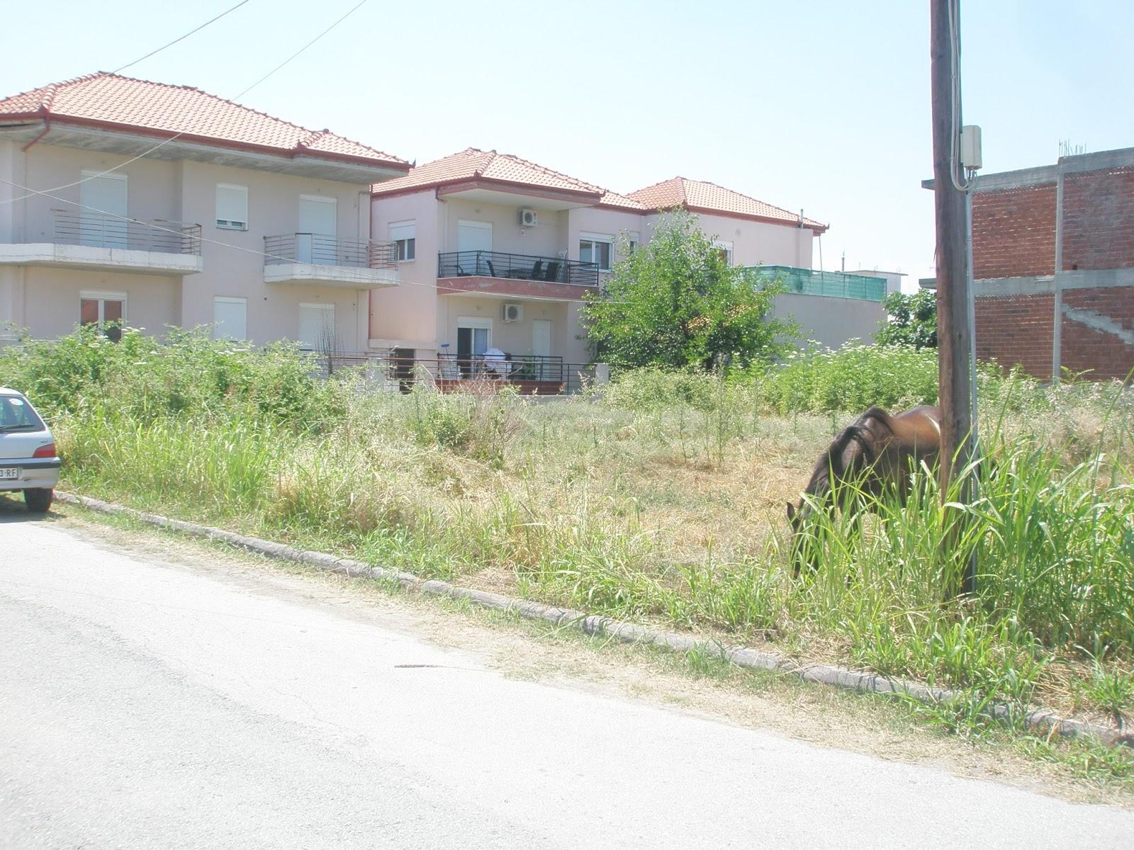 Снять квартиру на лето греция