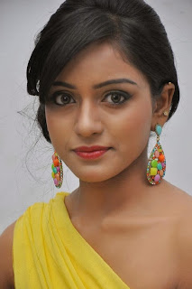 Actress Vithika Sheru Pictures at Prema Ishq Kadhal Audio Success Meet Function  0002