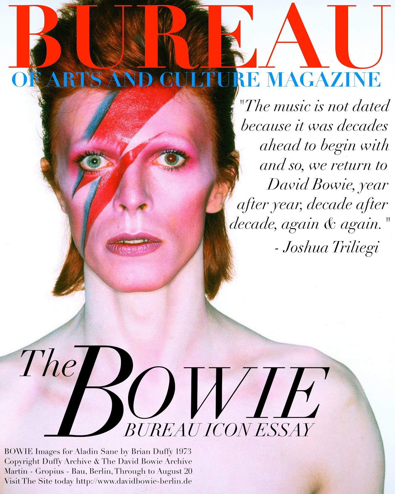 Tap DAVID BOWIE ICON ESSAY