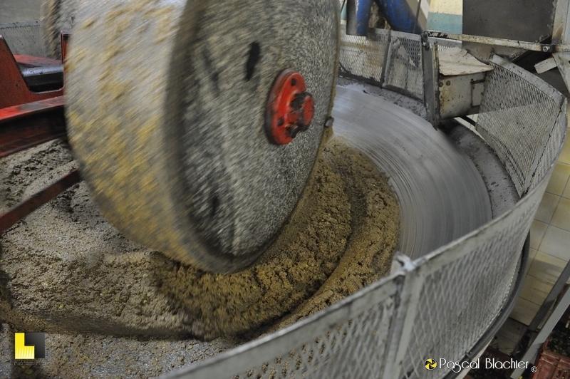 Pâte d'olive écrasée par des meules de pierre photo blachier pascal