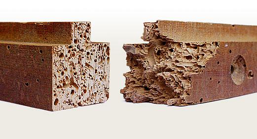 Marzua c mo acabar con la carcoma paso a paso - Como eliminar la carcoma de la madera ...