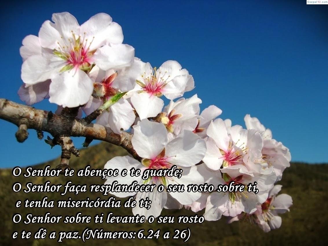 Famosos Olha para Cima: O Senhor te abençoe e te guarde - Números 6:24-26 KF49