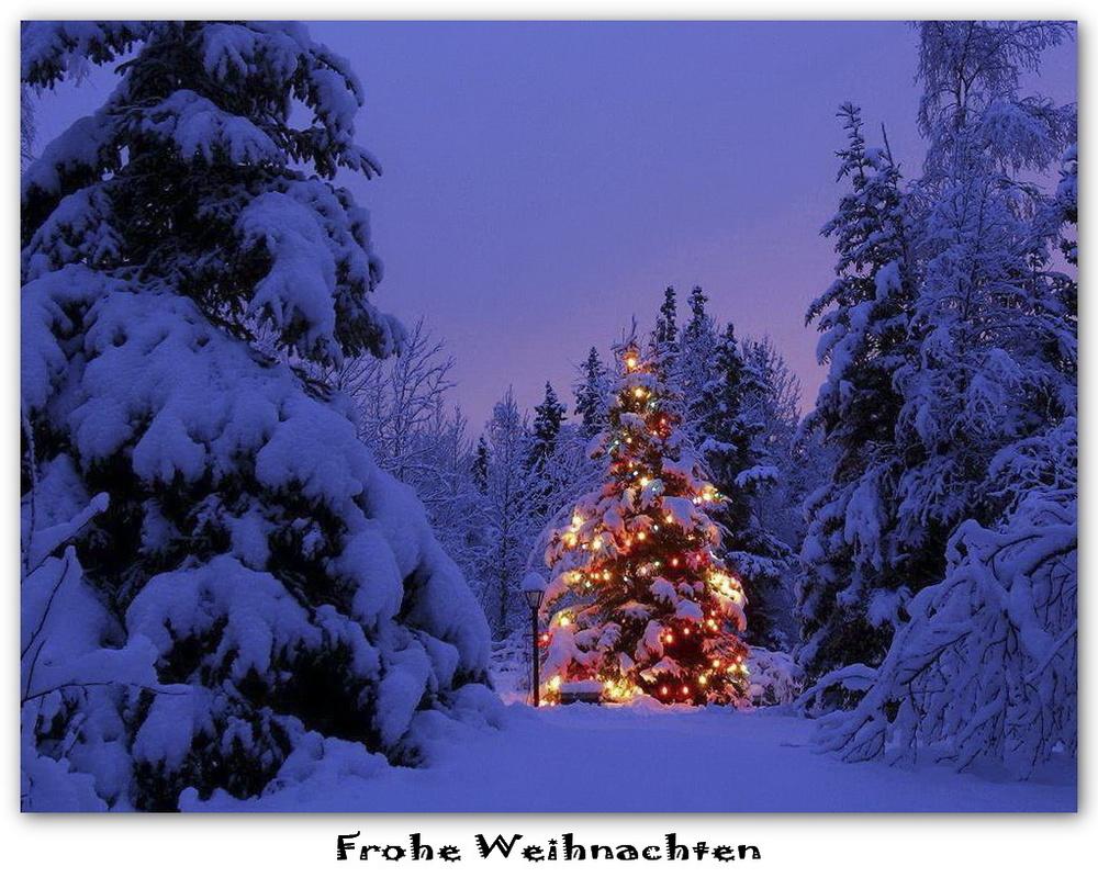 [Image: Frohe-Weihnachten-a19634397.jpg]