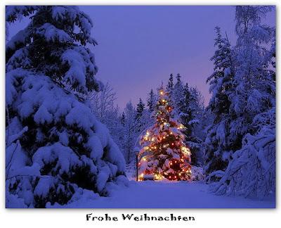 Danny TESTET: Frohe <b>Weihnachten</b>