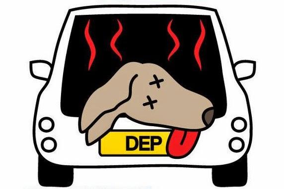 veterinaria online emergencias en perros
