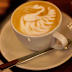Coffee facts, If you are a coffee lover you should know this