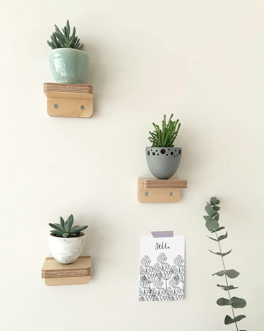 Belevend bewijs: plant eens een plantje... in huis.
