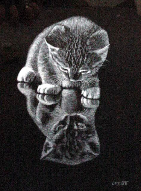 Scratchboard art for kids - photo#25