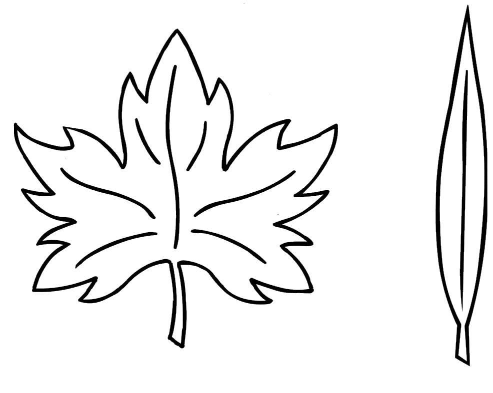 Menta m s chocolate recursos y actividades para educaci n infantil dibujos para colorear - Hojas de otono para decorar ...