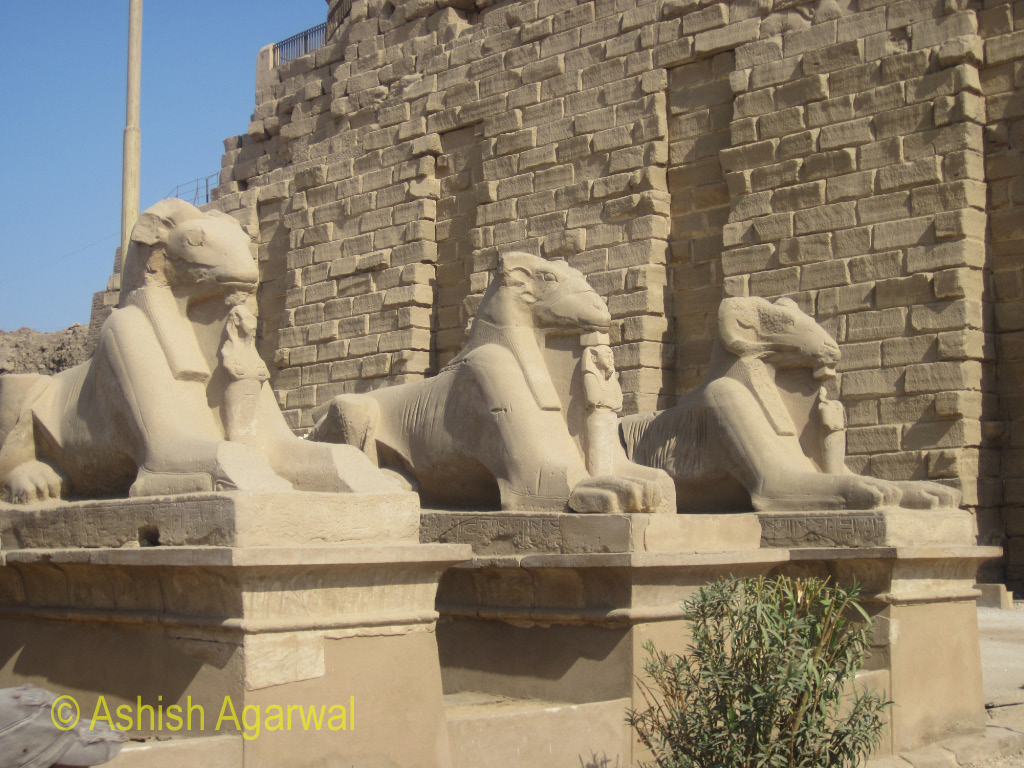 View of Sphinx in a line at the entrance to the Karnak temple in Luxor