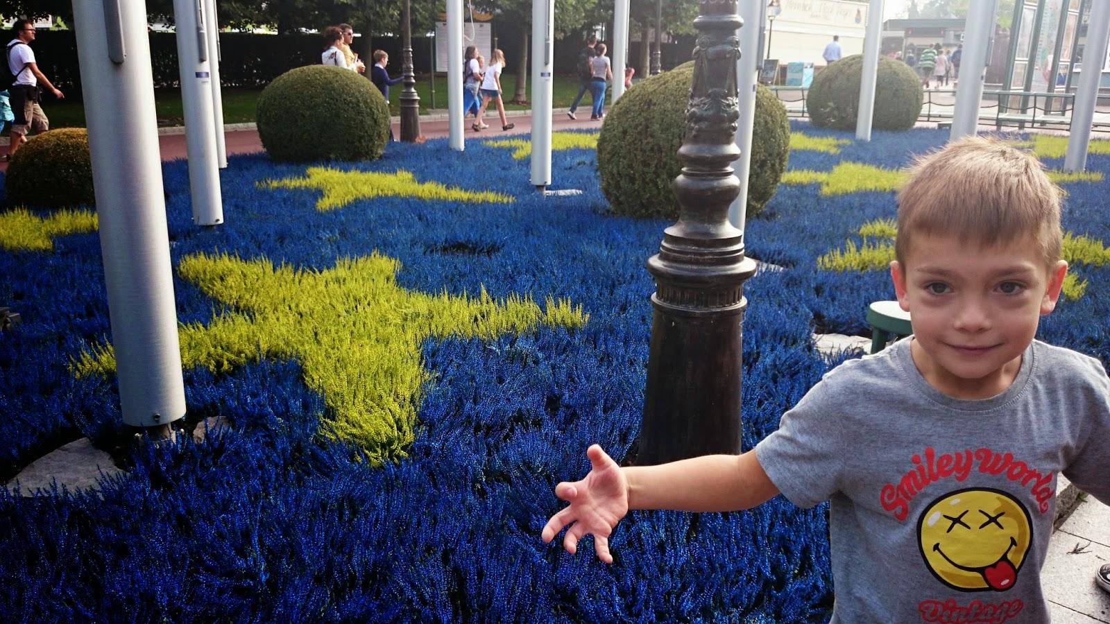 europa park,parrk rozrywki,wrzosy,kolorowe wrzosy,śmieszne koszulki
