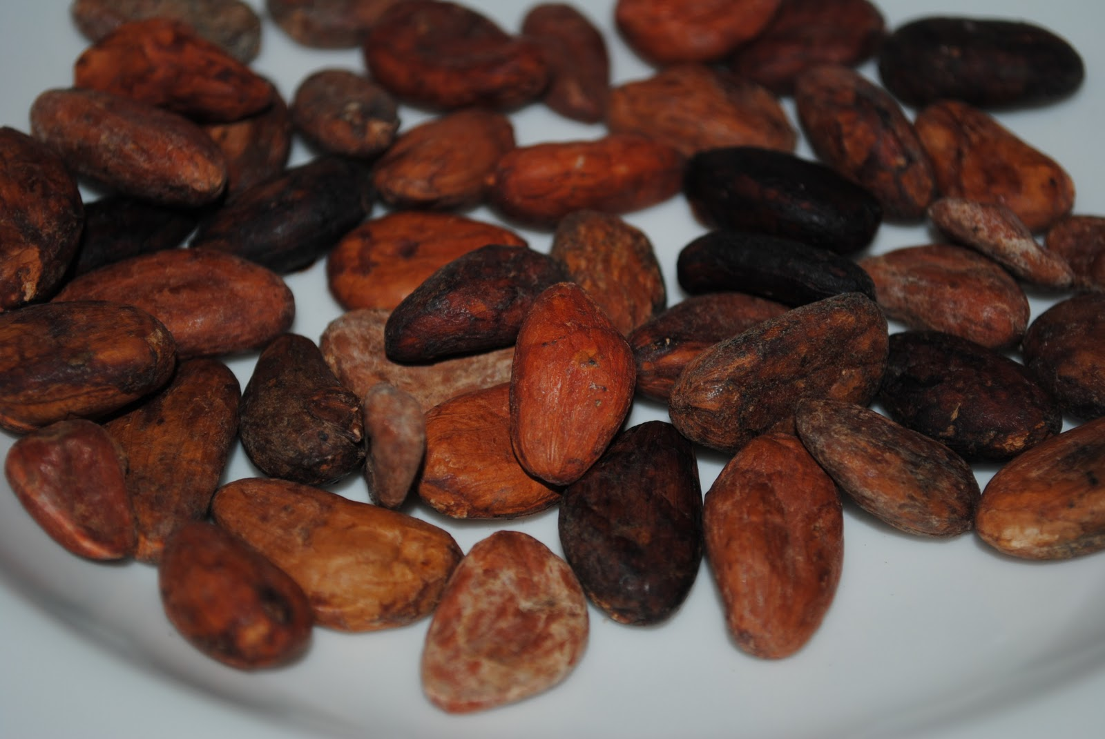 how to eat raw cacao beans
