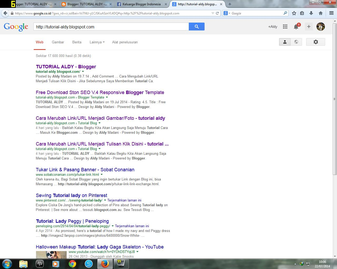 The Result Of Article URL In Google