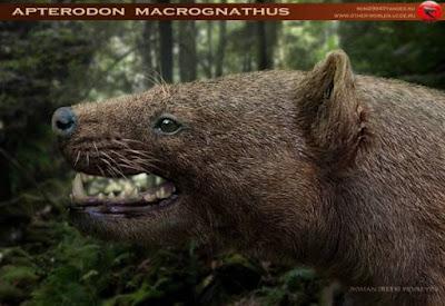 Apterodon