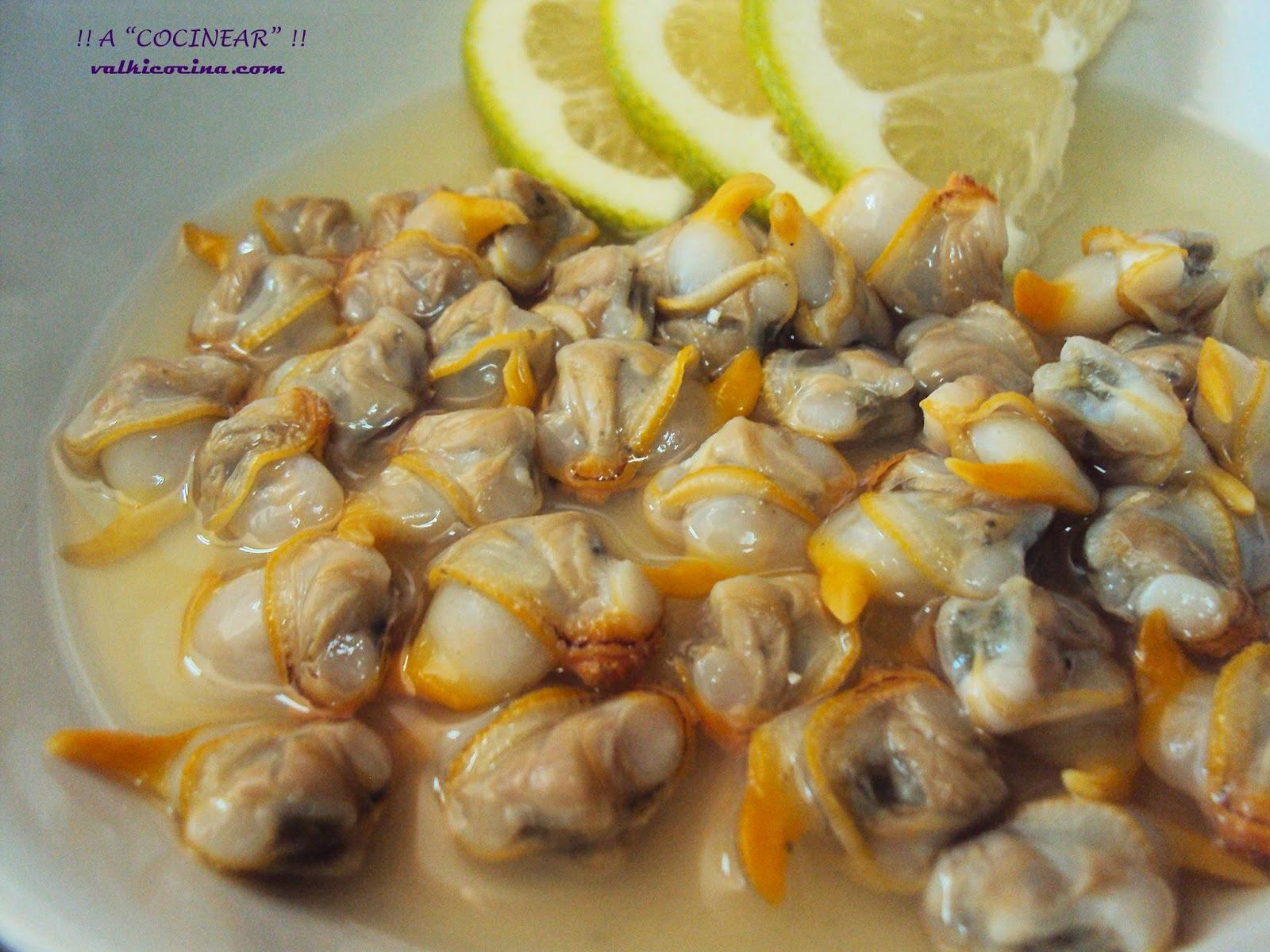 Cocinar Berberechos Frescos | Berberechos Al Limon A Cocinear Recetas Valkicocina Com