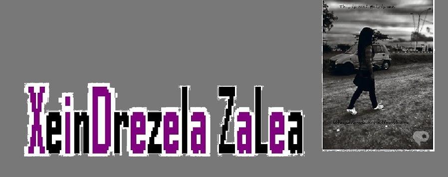 XeinDrezela Zalea