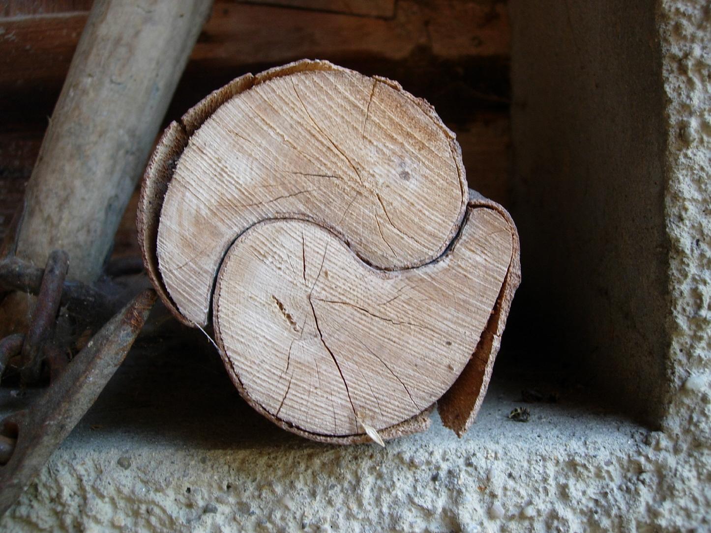 http://4.bp.blogspot.com/-3pZJIPTvwbE/Tlb7Fd9M4KI/AAAAAAAAAp0/nvgJzLFXbs0/s1600/www.Vvallpaper.net_ying_yang_sensei_ekinoks_denge_wood_funny_awesome_love.jpg