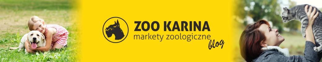 Blog ZooKarina