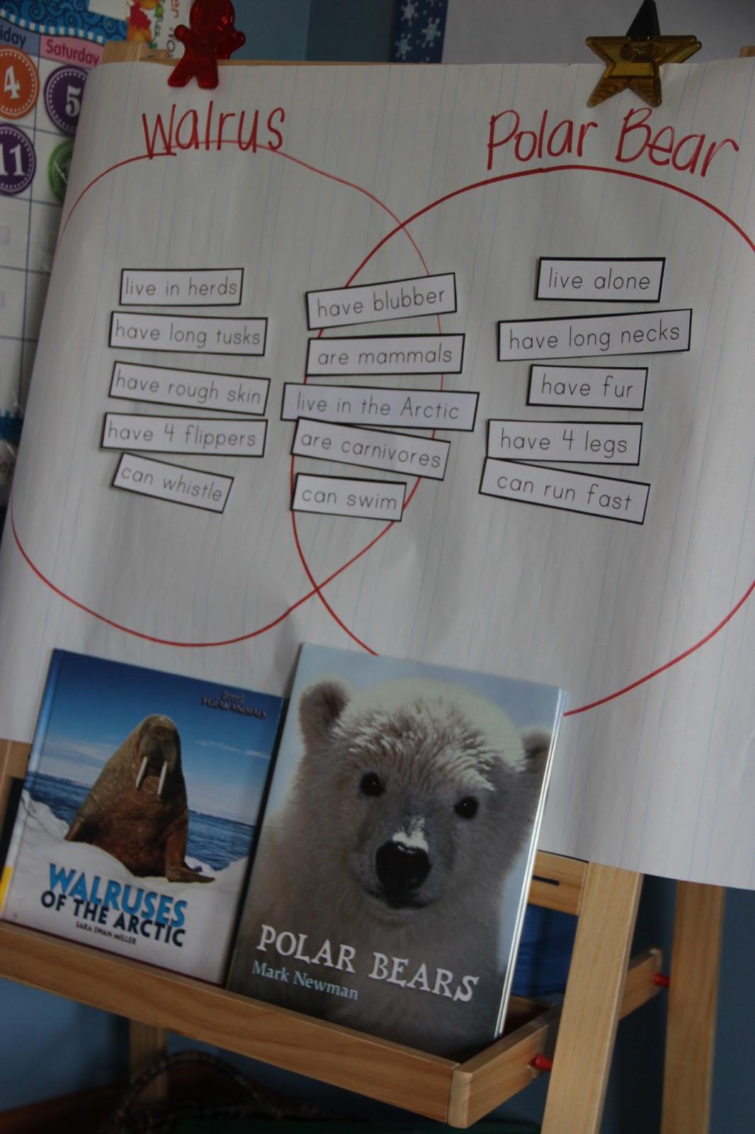 IMG_1189 the johnson journey unit theme winter polar animals