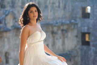Deeksha Seth in Pink Sleeveless Top Spicy Gown Spicy movie stills from movie Nippu