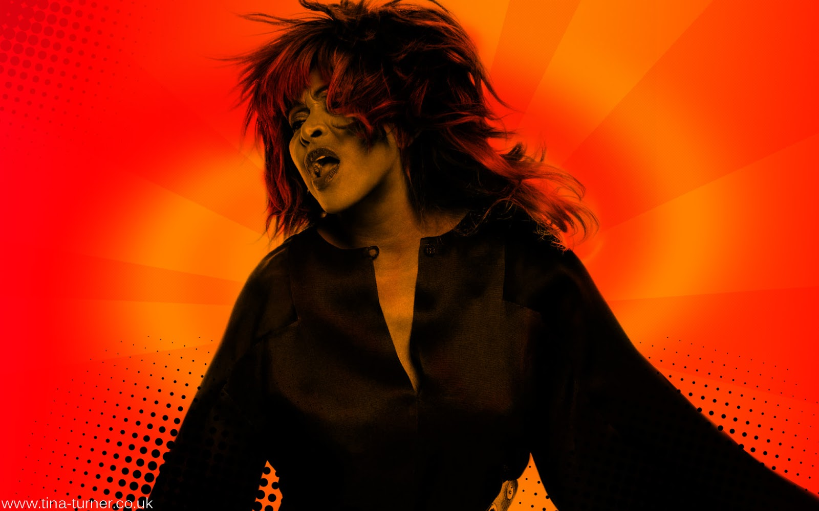 tinaturnercouk tina turner 2013 wallpaper