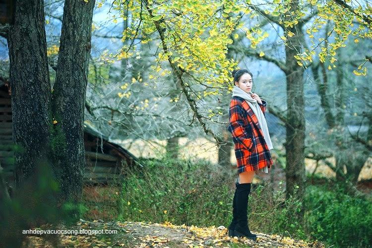 Thiếu nữ dao phố mùa thu 15
